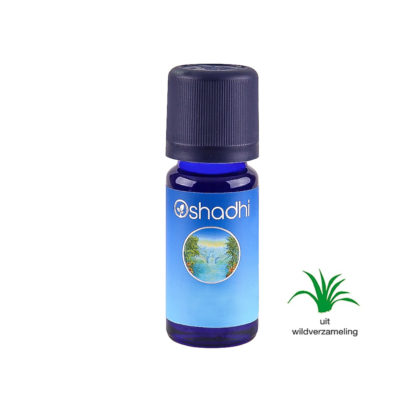 Oregano, Mexicaanse - 10ml